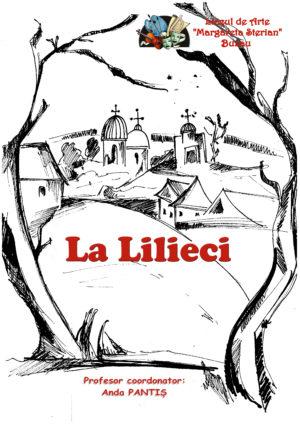 "LA LILIECI (Liceul de Arte ""Margareta Sterian"" Buzau)"